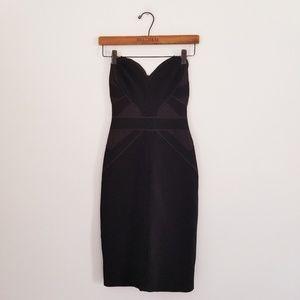 Zac Posen Strapless Bodycon Dress